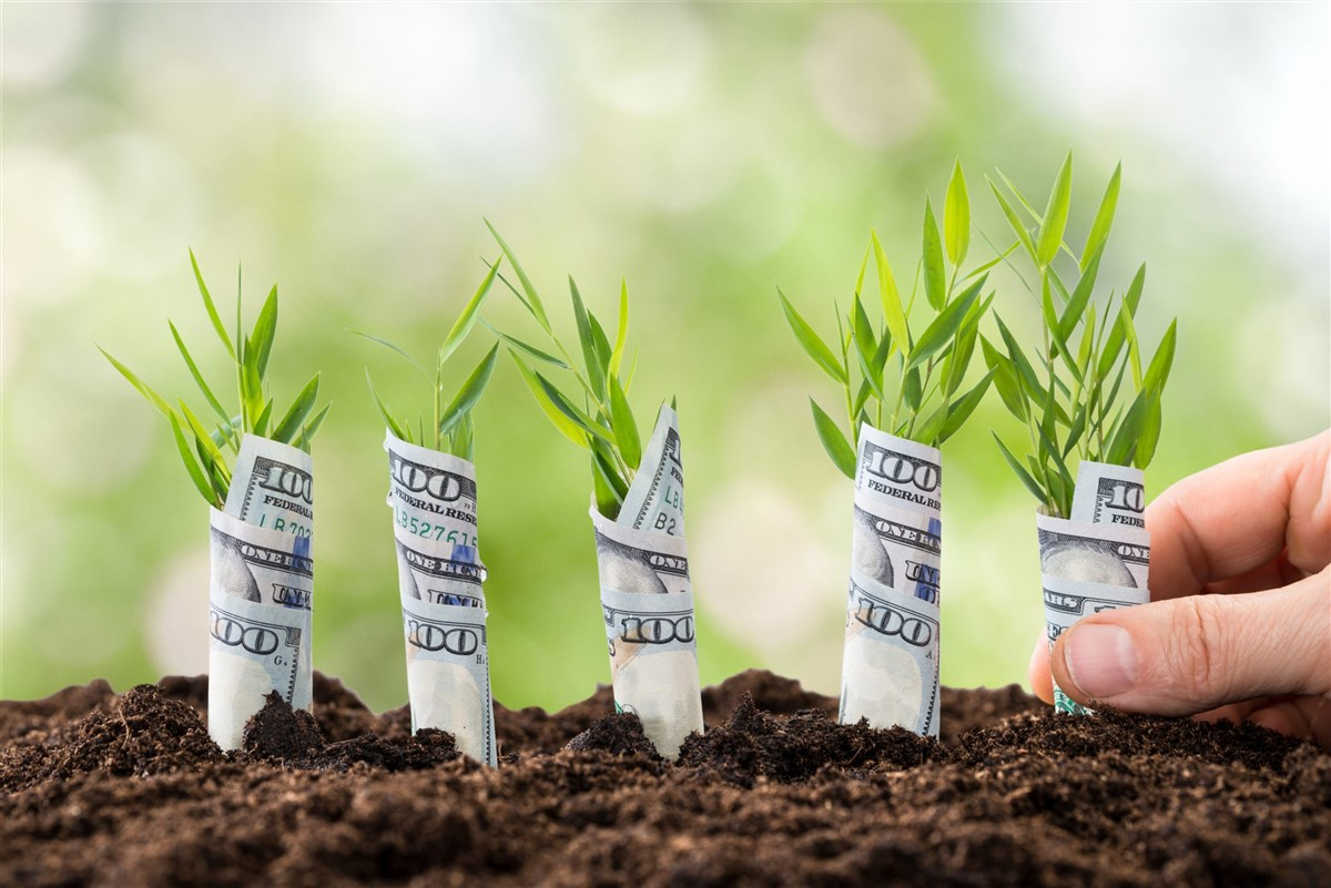 Read more about the article Nigeria Tech startups that have raised pre-seed funding in 2020