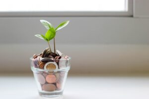 10 Top Impact Investing companies in Africa you should know