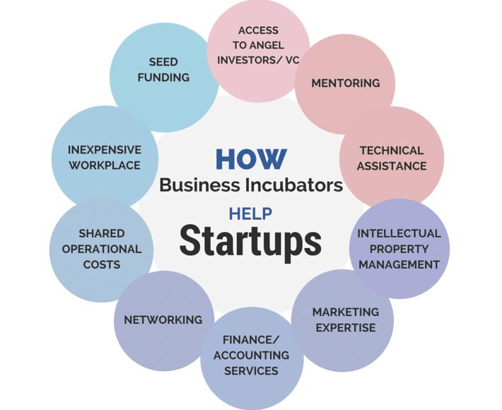 Startup Incubator Business model